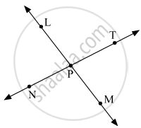 Are the Ray Pm and Pt Opposite Rays? Give Reasons for Your