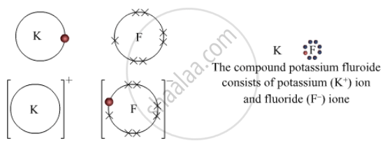 Show with the Heip of Diagram of Electronic Configuration