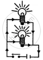 Draw a diagram showing two bulbs connected in parallel to