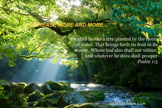 psalm1-3-26684750-P