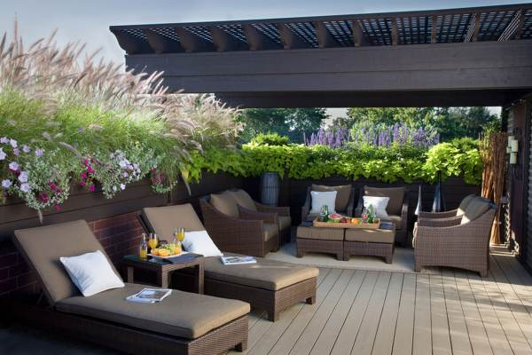 Patio Privacy with Plants Ideas