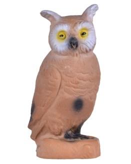 Longlife Little Owl