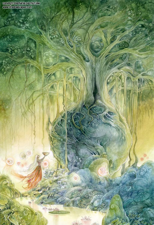 Girl In Woods Wallpaper Shadowscapes The Art Of Stephanie Law