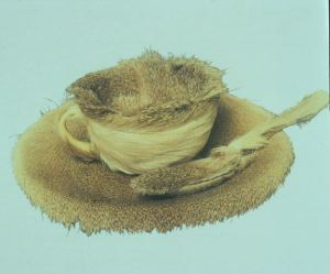 Oppenheim_Fur_Cup_Spoon_and_Saucer_1936