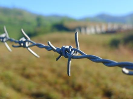 barbed-wire-114500_640