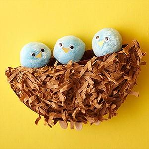pom pom bird nest 7.jpg.png