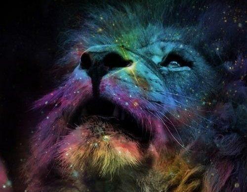 888 Lion's Gate Vibrations