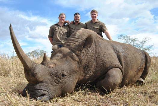 550 Magnum & Rhino