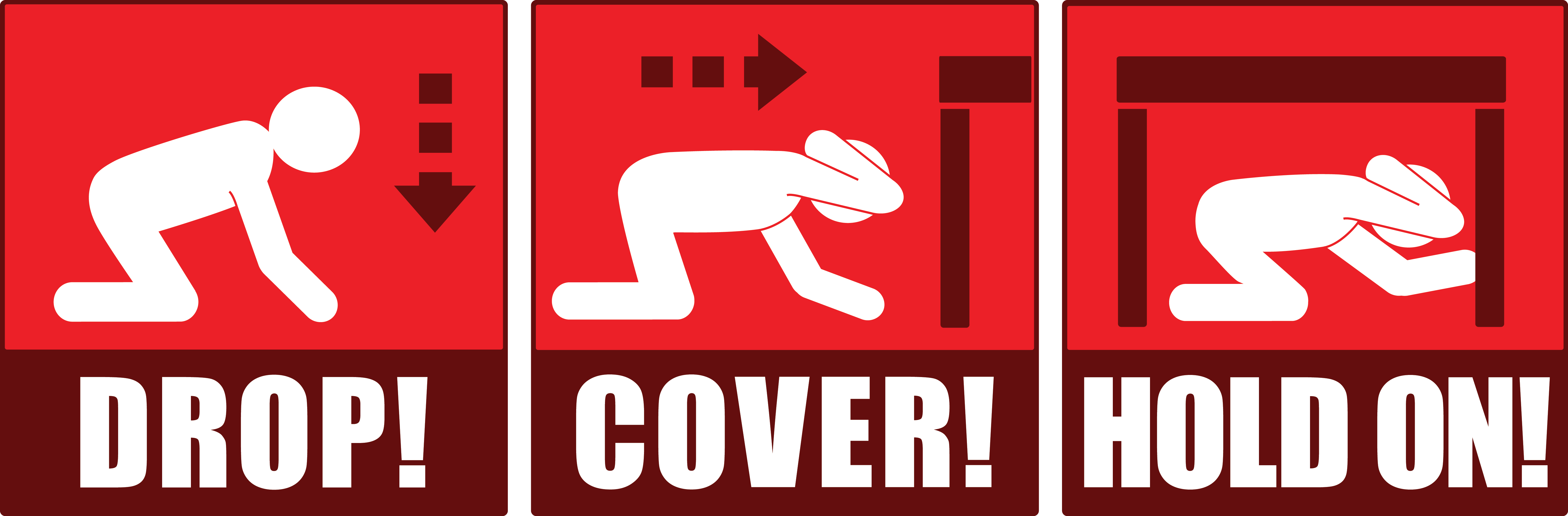 Great Shakeout Earthquake Drills