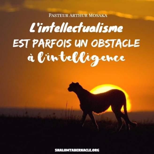L'intellectualisme est parfois un obsatcle à l'intelligence...