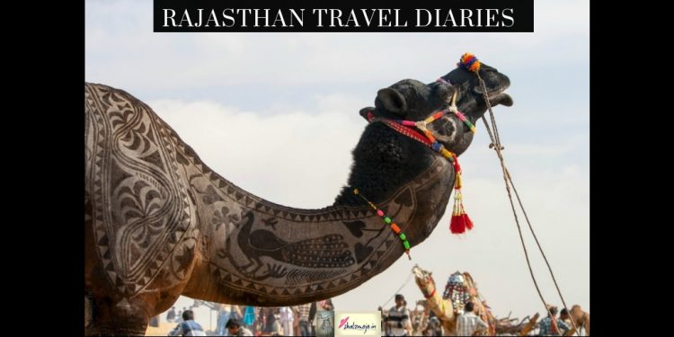 camel fair in bikaner in the desert in Rajasthan - travel-hospitality- holiday-India-shekhawati