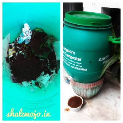 chintan-goonj-sustainable-lifestyle-writetribe-write-bravely-challenge-composting-decluttering-soapnuts-alternate-lifetyle