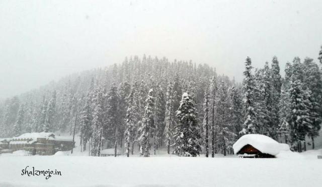 Winter-dal-lake-srinagar-kashmir-travel-tourism-shikara-India-kashmiri-cold-houseboat-walnuts-kehwa-snowfall-snow