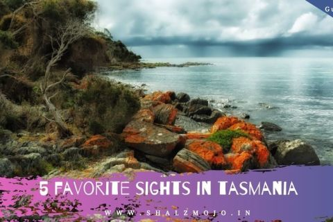 December- guest post- Tasmania - Australia - sightseeing- sea- beach- tourism- holiday- travel