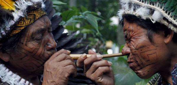 Healing With Sacred Tobacco: Rapé Tribal Snuff