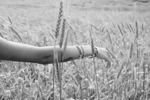 braço movendo-se através do trigo