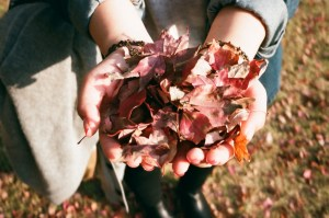 hands holding autumn leaves