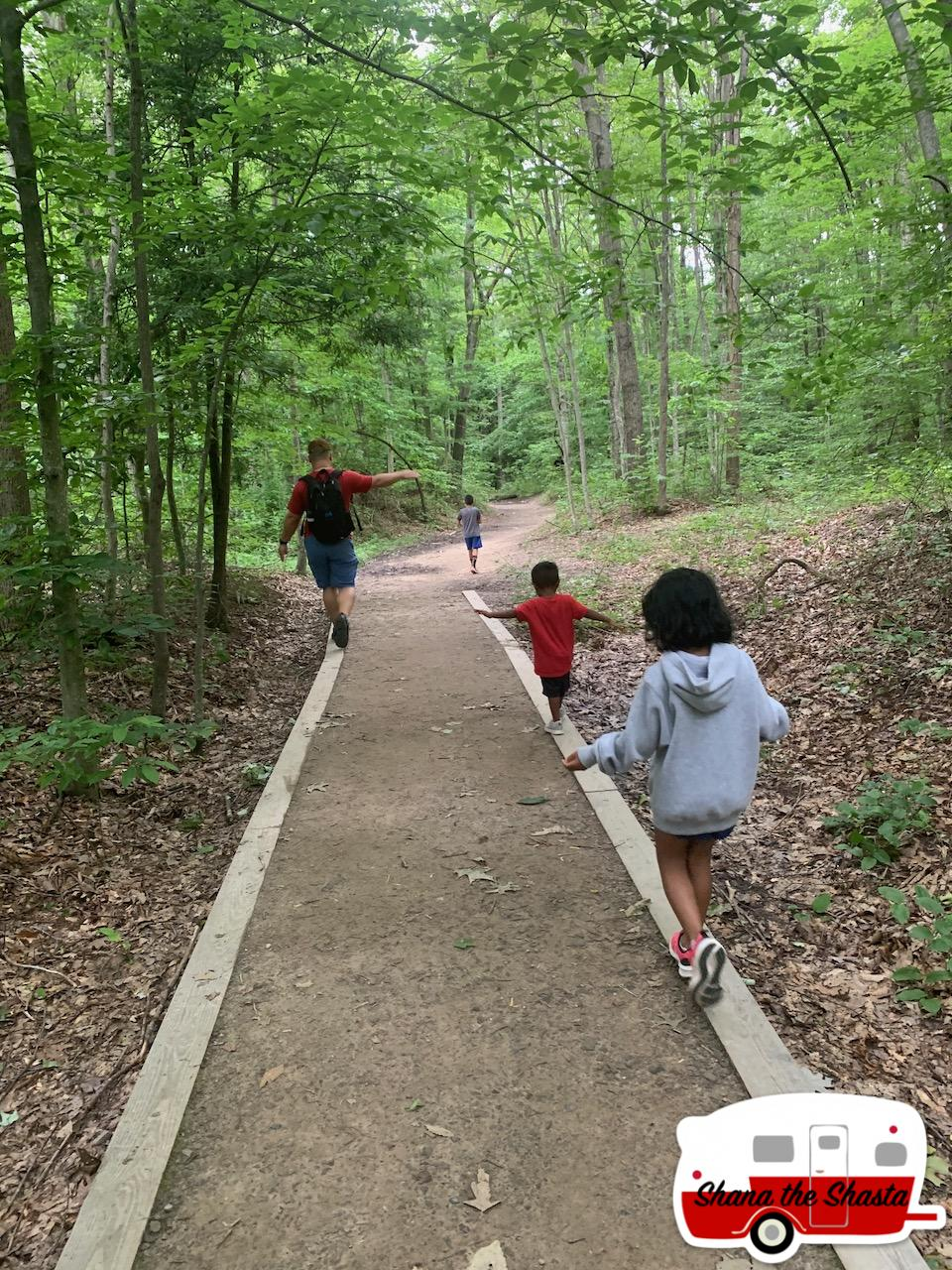 Balance-Beams-on-Long-Point-Trail