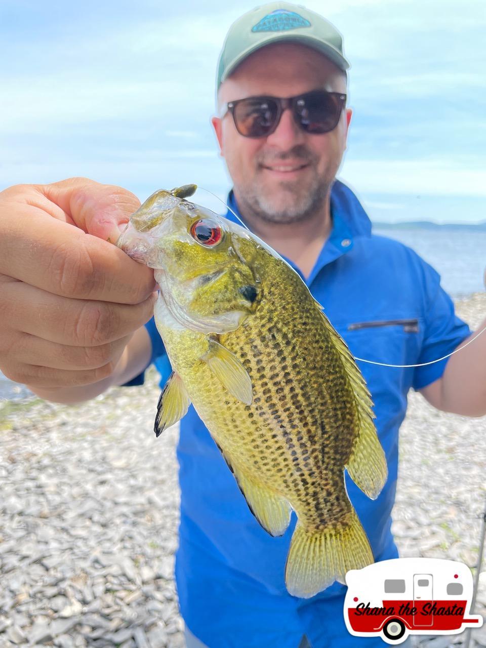 Rock-Bass-from-Lake-Champlain