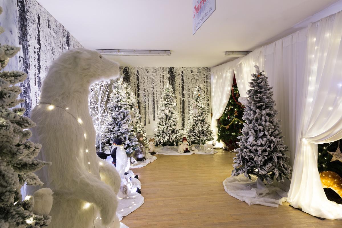Shandon Winter Wonderland  Shandon Hotel