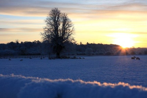 Sunrise over the Snow, Co. Kilkenny