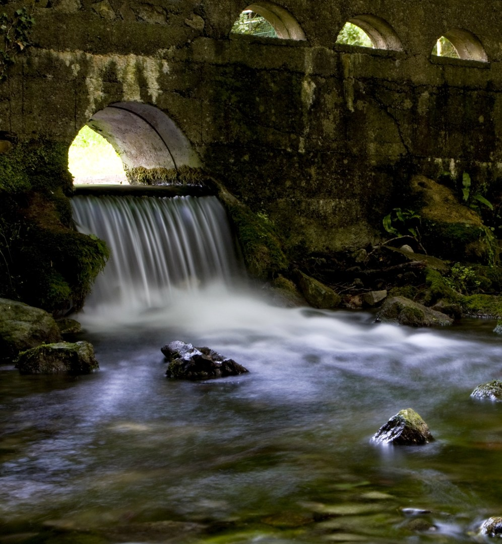St. Patricks Well, Co. Tipperary – Photo of the Week