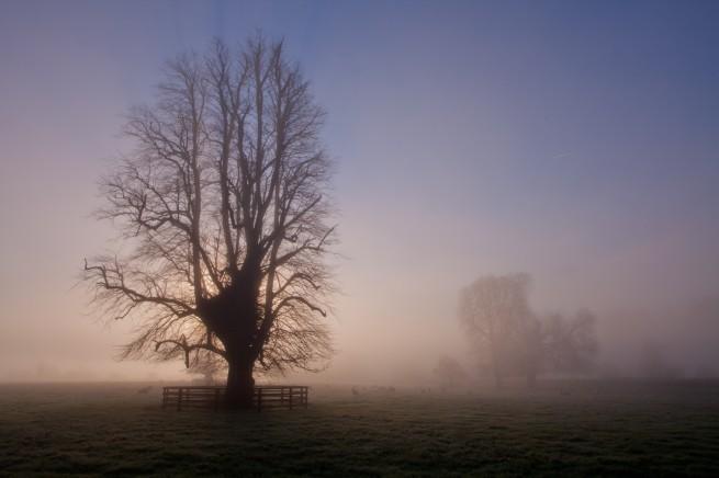 November Fog - Fog in Kilkenny