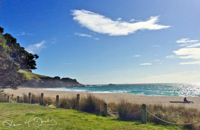 When you see it - fish or whale cloud in the sky - Mount Maunganui