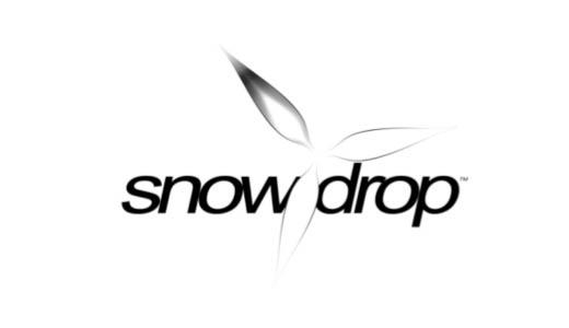 Snowdrop Engine: GDC 2014 – The Q&A – News