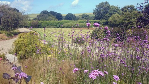 The eye is drawn down the garden from the front of the house to the wild flower meadow and sea views.
