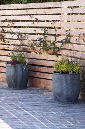 We have used washing dollys to create planters for the climbers to grow up the palisades in this coastal garden.