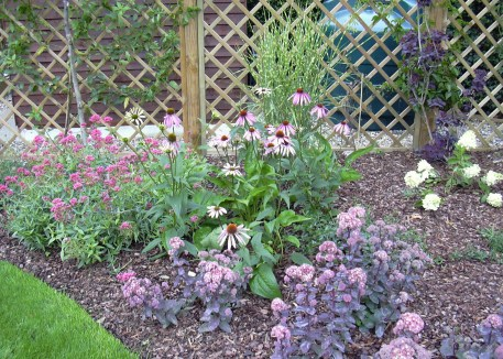 The planting gives colour and attracts bees and butterflies in this medium sized garden.