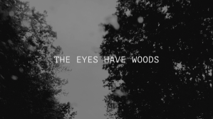 "Black and white short of two rows of trees on either side of an unseen road, as seen from below. A few raindrops have collected on the window or camera lens, overlaying the trees. In white text across the center, an all-caps title reads ""The Eyes Have Woods."" This is the title screen from a film-poem."