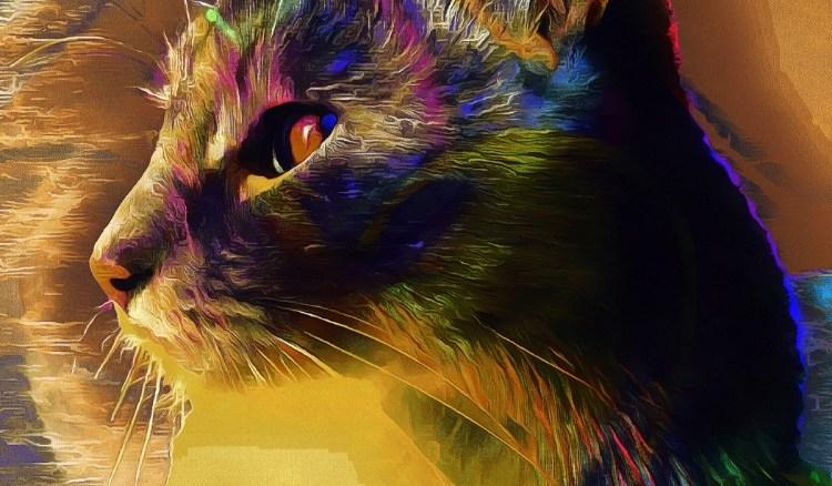 Cat Spirit Guide