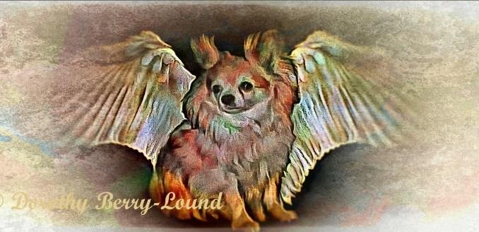 My Angel Waits For Me