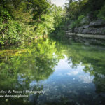 cypress-creek-at-jacobs-well