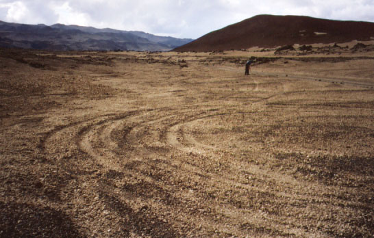 We spent time in Askja raking the tracks of people who feel the rules do not apply to them. The roads through the highlands are clearly marked, and in fact you have to drive over a little brim to get offroad, but people do it anyway. The ecosystem is much more delicate than it looks, and tire tracks like these do not go away on their own... they encourage other drivers to break the law, they change the natural drainage of the soil, and when water collects in the tracks, vegetation starts to grow there. Tire tracks filled with plants are like human pockmarks on this beautiful area. DON'T DRIVE OFF ROAD!!! If you do, you risk being chased by crazy people wielding rakes. And I can assure you, they will show no mercy.