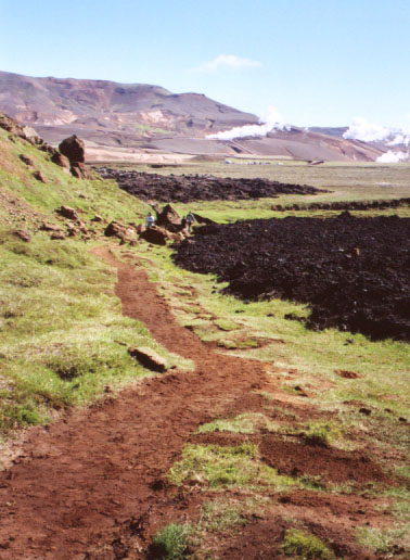 We were once again widening, flattening, and removing rocks. We also replanted turf into places where people walking off the path had damaged the vegetation.