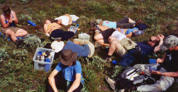 This was a vacation, but it was also really hard work. As it got hotter and the rocks got heavier, our lunch breaks were often accompanied by sleepytime.