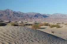 Mesquite Flat Sand Dunes