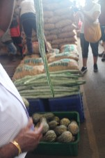 The aptly named snake gourd