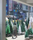 Yes, it's a million degrees, but it's also almost Christmas in Colombo!