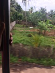Bombing through the countryside on a local train, doors wide open. You can't seem my knuckles, but they are WHITE. But I'm smiling.