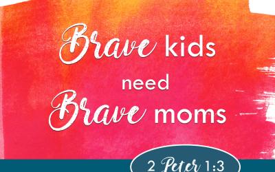 Brave Moms, Brave Kids by Lee NienHuis