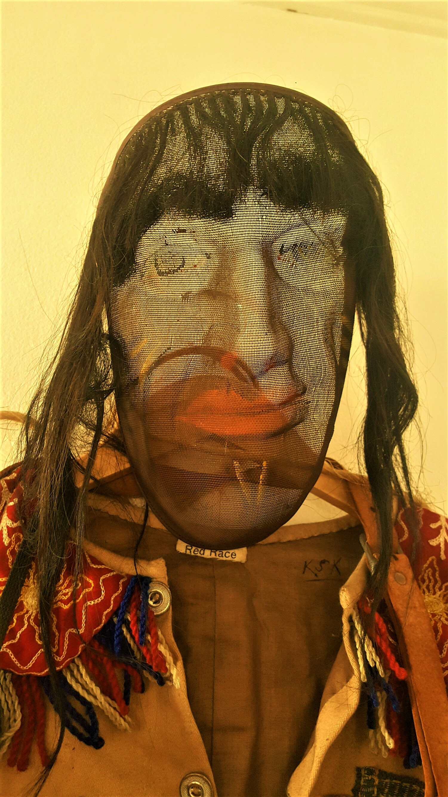 An indian odd fellow in my living room shannon scott i am an odd fellow in the tribe of individualism and america is my great spirit biocorpaavc Image collections