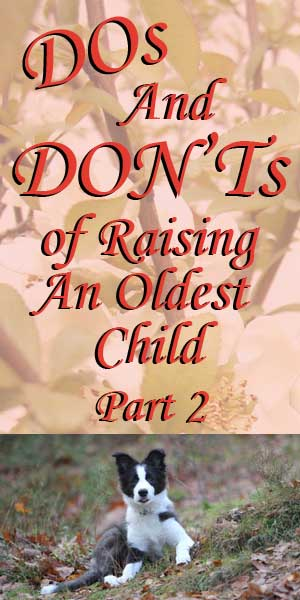 Part 2: Dos and Don'ts of Raising An Oldest Child Continued. . .