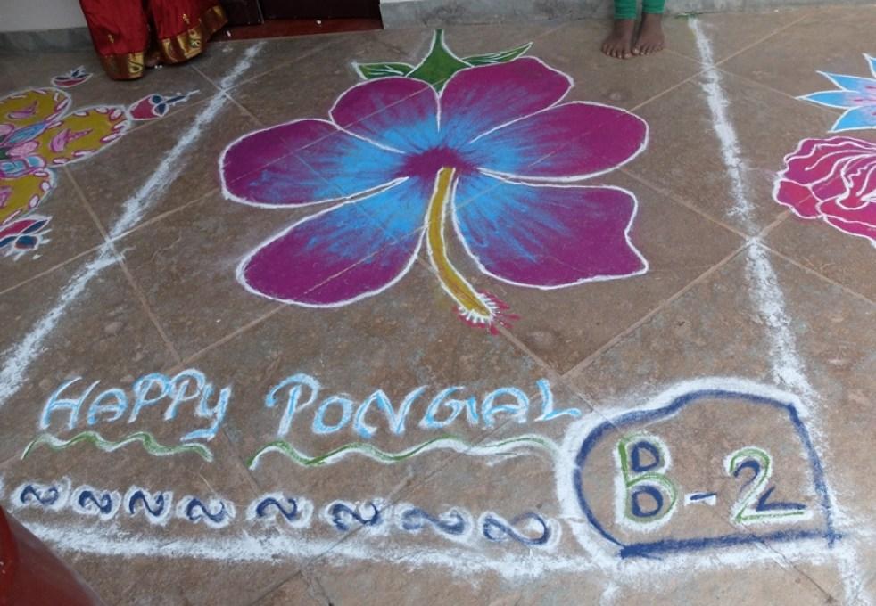 Pongal 16 01 2016-11