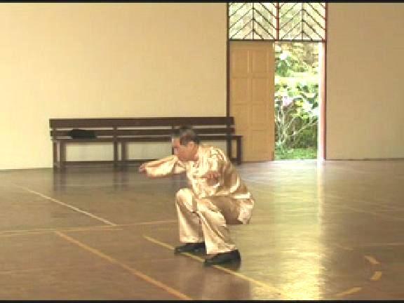 Shaolin Kungfu
