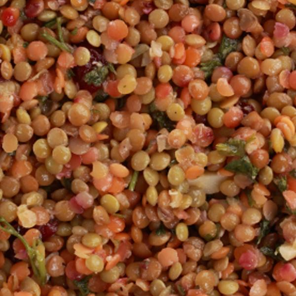 LENTILS build your iron stores