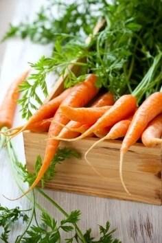 Καρότα: